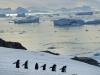 Antarktis 002