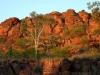 Aborigines 006