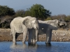 Namibia 037