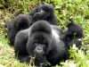 Ruanda 004