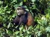 Ruanda 033