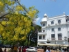 Sri Lanka 015